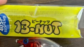 ビーナッツ