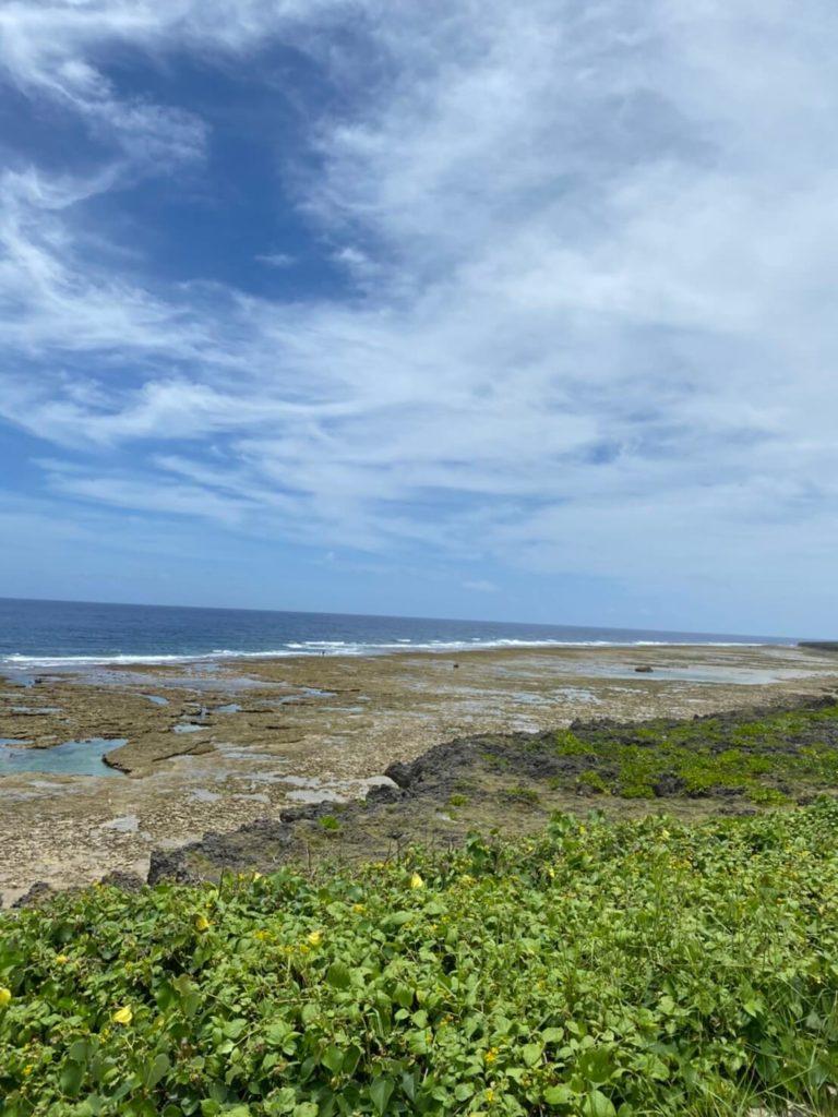 荒崎海岸のリーフの眺め